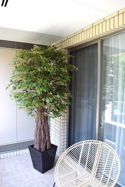 ベランダ リアル 人工観葉植物 ベンジャミン