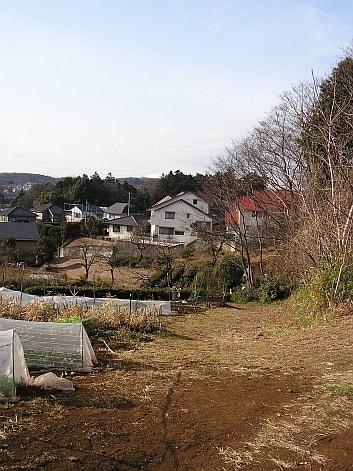 鎌倉街道 上道