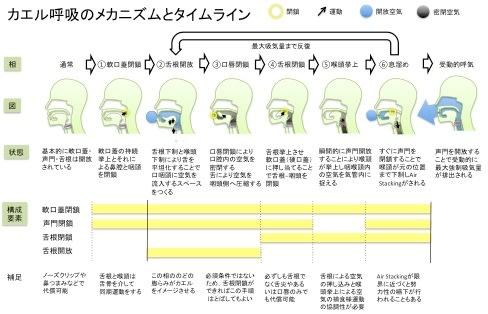 カエル呼吸方法