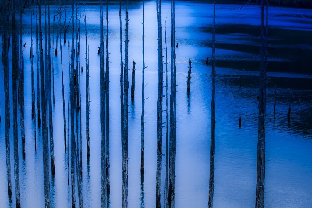 自然湖の写真