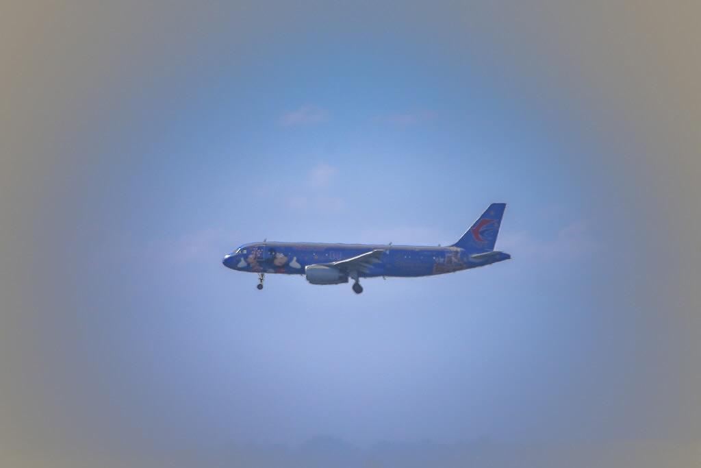 ディズニー 飛行機