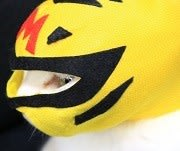 猫 点眼補助具 目だしマスク 点眼マスク(覆面) 猫の目薬用 猫用品:ノーマル版 _ POWERBOMB パワーボム