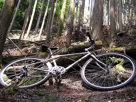 鳥首峠 自転車
