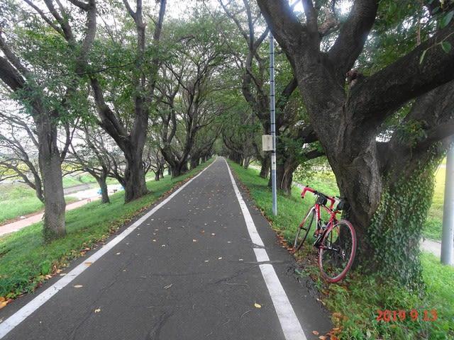埼玉県道155号さいたま武蔵丘陵森林公園自転車道線