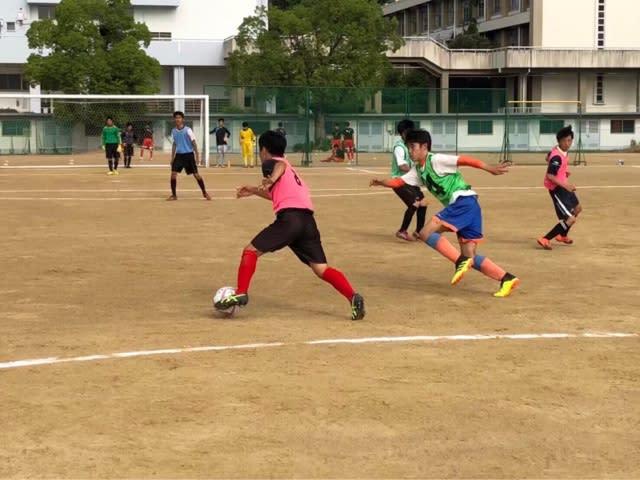 部 一覧 2019 選手 サッカー 興国 高校