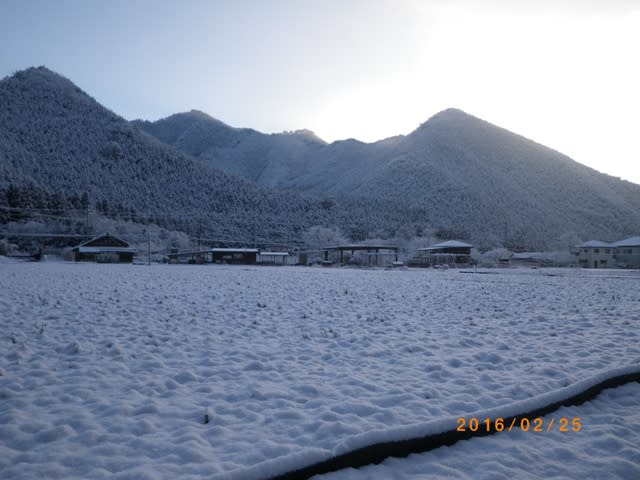 里の雪景色