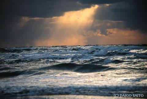 大海原の光