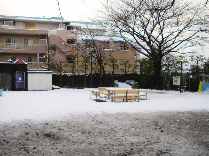20110215_9