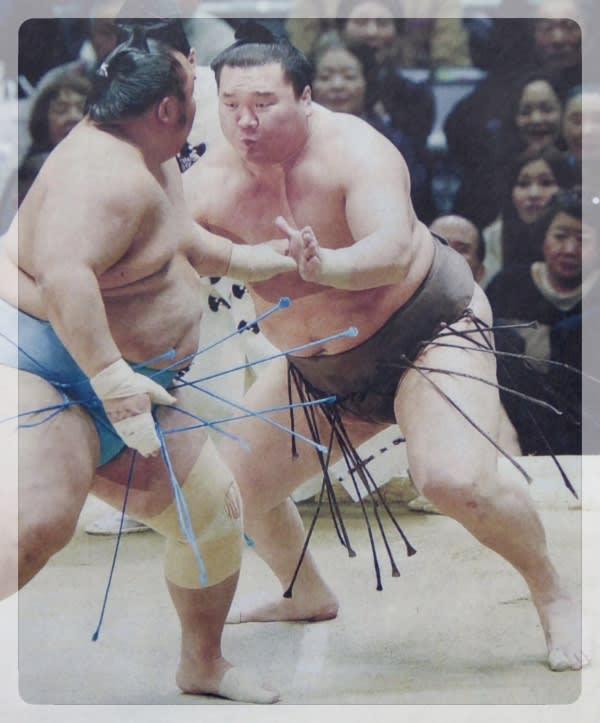 見苦しい大相撲力士の過剰テーピング - タックの庭仕事 -黄昏人生残日録-