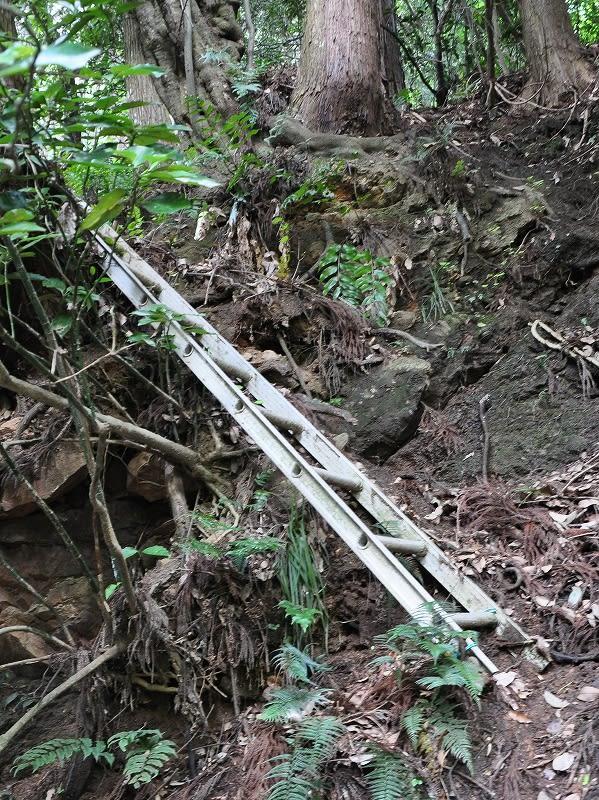 ハタノ滝梯子