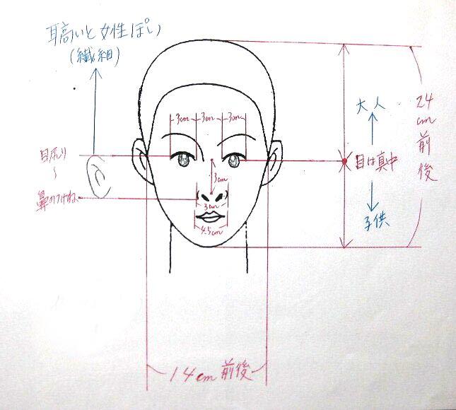 理想の顔のバランス!耳の位置と眼鏡 編 - H'air STAFF BLOG