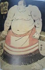 2016年5月のブログ記事一覧(3ページ目)-相撲史に関心・興味のある方どうぞ