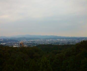 ジオキャッシング「Sakurayama observatory」
