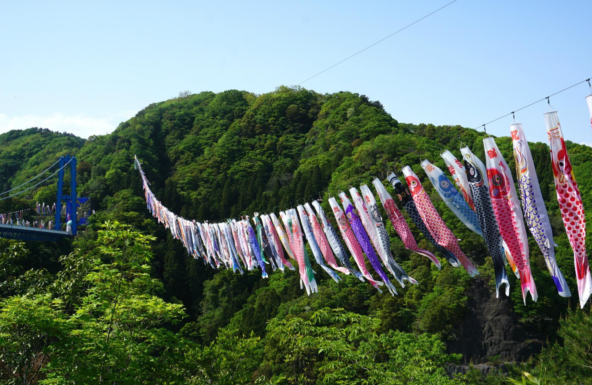 初夏です 鯉のぼりです ~竜神峡・竜神大吊橋~ - ヒマヒマノキ~心と言葉をとどけます~