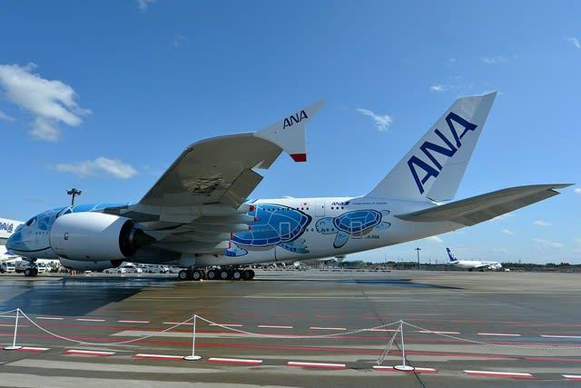 ホヌ 飛行 フライング 遊覧 コロナ禍でもハワイ旅行気分を! ANAがA380型機による遊覧飛行を実施