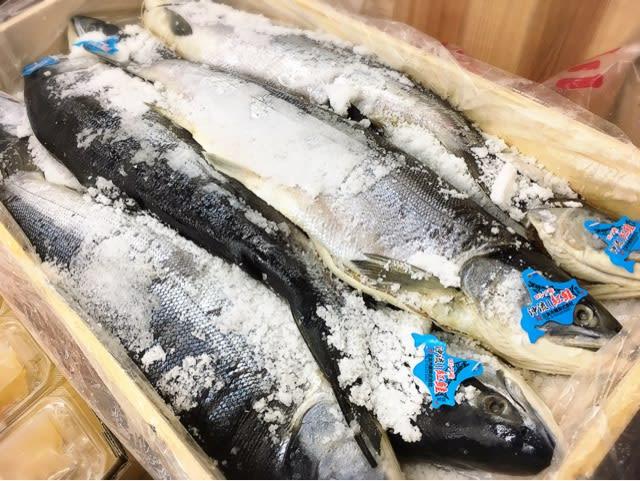 紅鮭 ロシア沖流し カネ共 - 有限会社 竹中商店