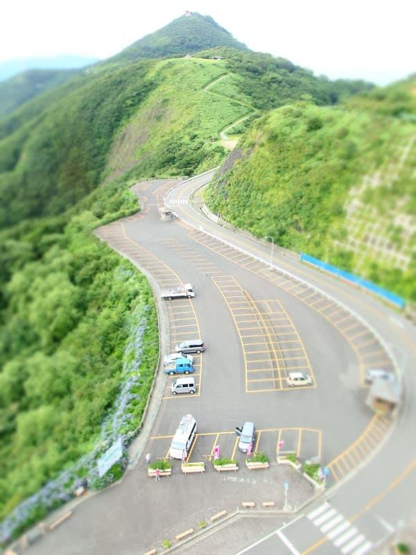 青島食堂 西堀店(新潟県新潟市) - 仙台ラーメン最強伝説