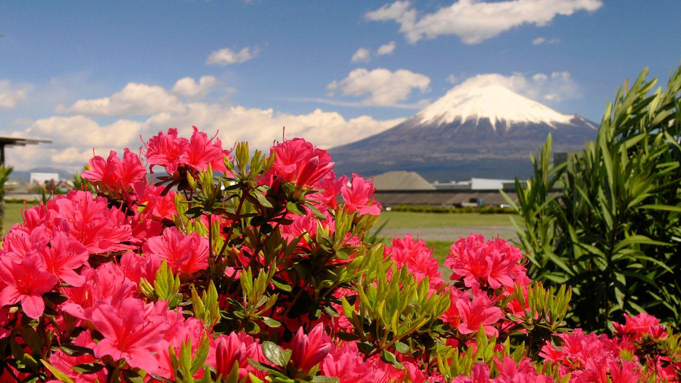 赤い花と富士山 パソコンときめき応援団 壁紙写真館