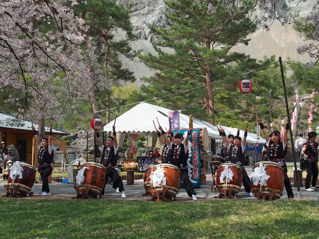 大鹿さくら祭り - 「美しい村」の議員日記