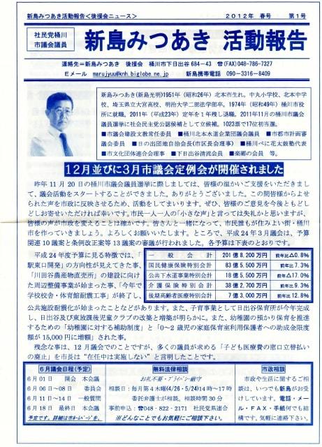 市議会 選挙 桶川 議員