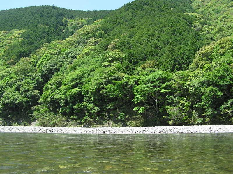 Kumaku