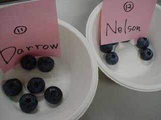 BluecropDarrow(ダロウ)とNelson