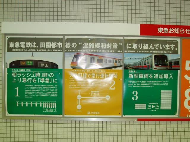 3cf5c884.jpg