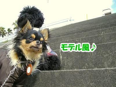 https://blogimg.goo.ne.jp/user_image/48/15/38de534d147979df95d20da1dd1663fc.jpg