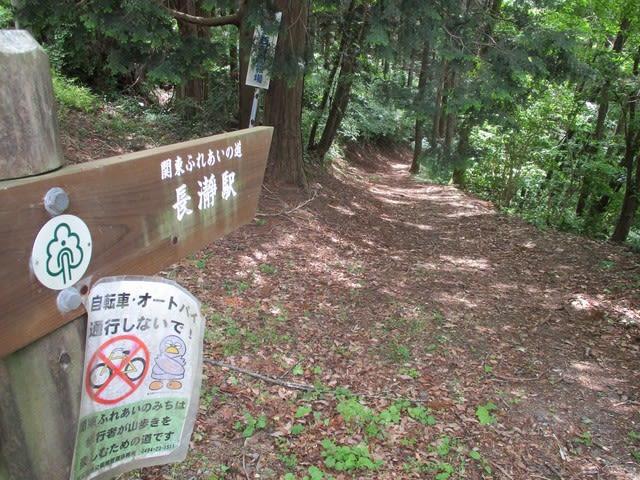 https://blogimg.goo.ne.jp/user_image/48/41/e83f5f593dbc2da311e67c2d886f19d6.jpg