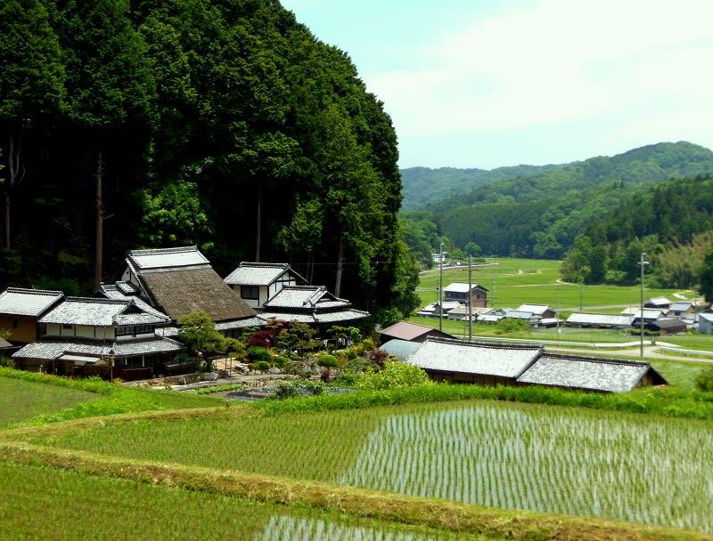 奈良県天理市 山田町の茅葺き民家 - 愛しきものたち