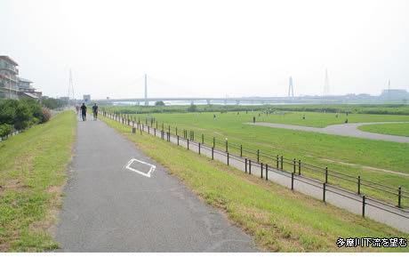 多摩川大橋緑地 - 日向興発のブログ