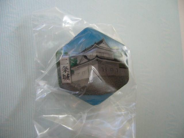 京都洛中ピンズ④二条城