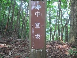 https://blogimg.goo.ne.jp/user_image/49/af/35f8a05463d52a65ad06dbc766aca428.jpg