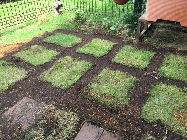張替え 芝生