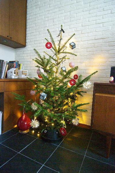 IKEAの生モミの木が点灯