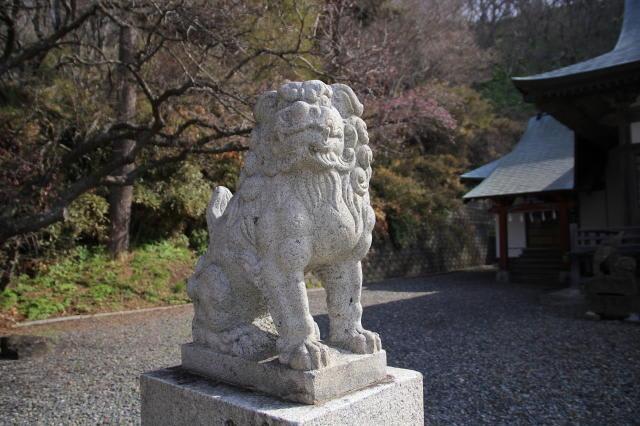 神社と狛犬見て歩き