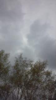 5月6日(<br />  日)雷雨、突風