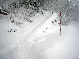 南光河原から上に登る階段。下山駐車場は除雪の関係上冬期閉鎖中。南光河原駐車場に車を置いて登ったとか・・・。