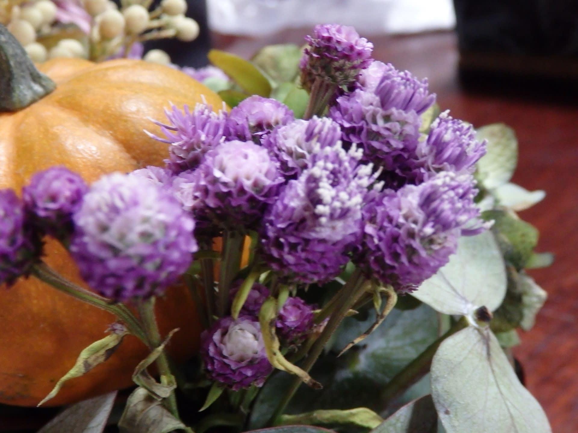 アザミ 花束