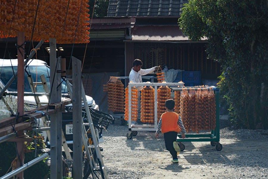 串柿作りの家