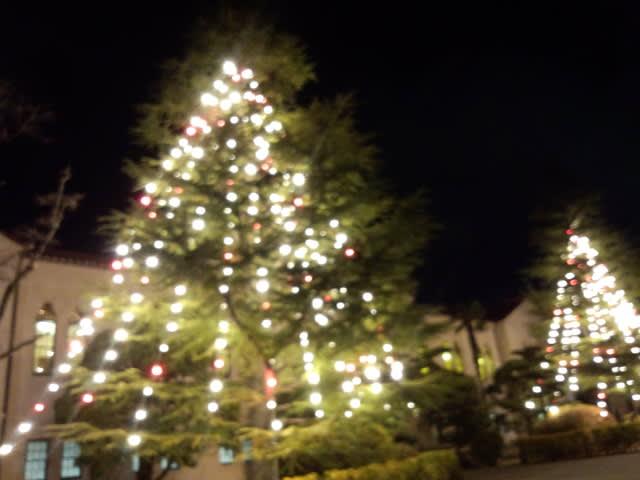 Christmas_light