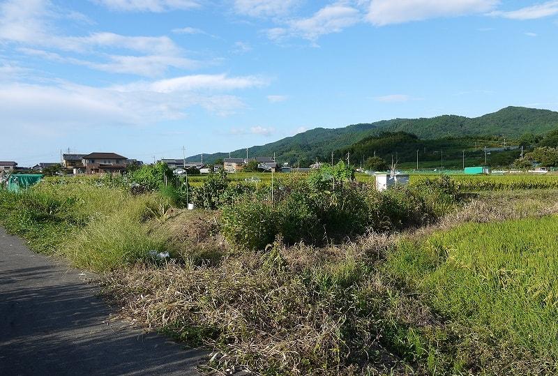 毘沙門塚古墳附近の畑