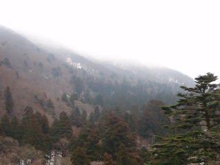 風景。これはお里の松からの景色。