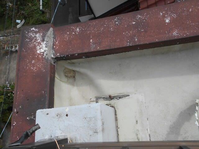 建物劣化の写真