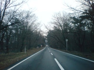 道を見ても、道脇をみても、白い影は奥の谷に少し見える程度。