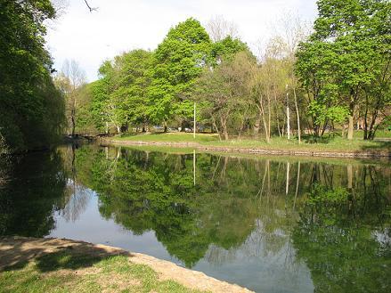 Dufferin Island in Spring