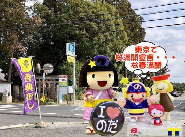 東京で桜満開宣言!な春満開な野田市