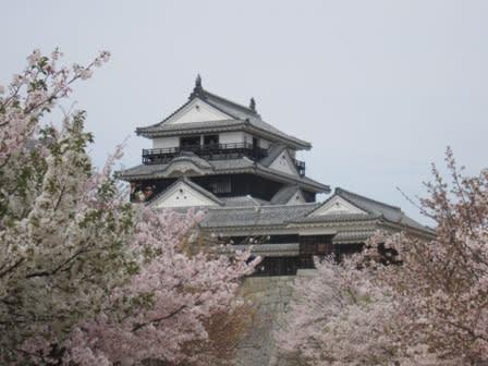 Matsuyamajou