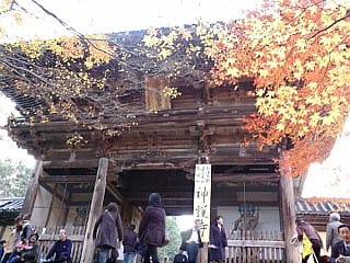 続いて、神護寺です。