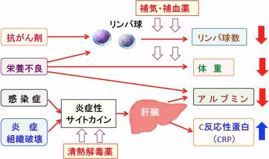DAS28-CRP|大阪大学大学院医学系研究科 呼吸器 …
